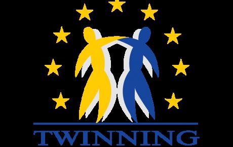 Programm-Logo Twinning